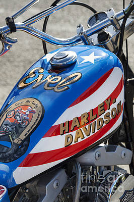 Harley Davidson Photograph - Evel Harley  by Tim Gainey