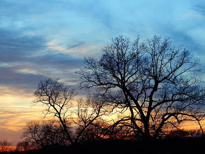 Photograph - Evening 2 by Virginia Kay White