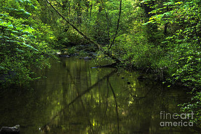 Photograph - Evening Along The Millstone River by Inge Riis McDonald