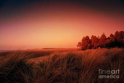 Norfolk Photograph - Evening At Holkham by John Edwards