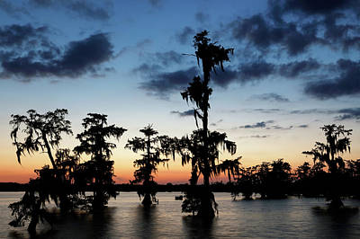 Photograph - Evening At Lake Martin 2 by Nicholas Blackwell