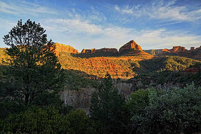 Photograph - Evening At Oak Creek Canyon by Theo O'Connor
