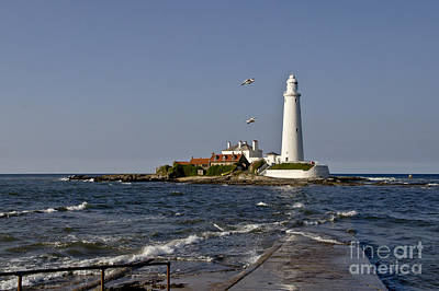 Evening At St. Mary's Lighthouse Art Print