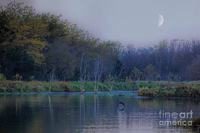 Photograph - Evening At The Lake by Elizabeth Winter