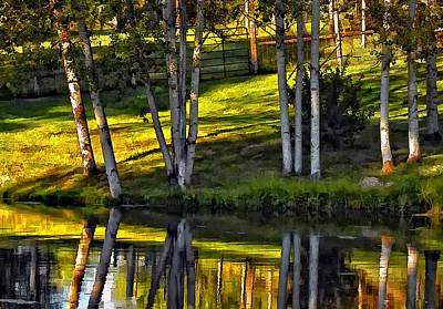 Evening Birches Print by Steve Harrington