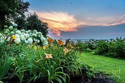 Photograph - Evening Bliss by Joann Long