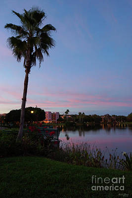 Photograph - Evening By The Palm Tree by Jennifer White