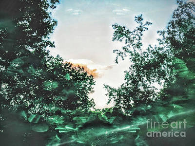 A Summer Evening Photograph - Evening Cloud by Olga Lyakh
