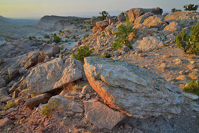 Photograph - Evening Comes To Bentonite Site Above Bang's Canyon by Ray Mathis