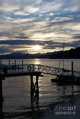 Photograph - Evening Connections by Terri Thompson