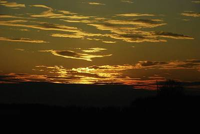 Photograph - Evening Delight by Wanda Jesfield
