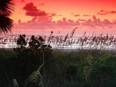 Photograph - Evening Dunes by Florene Welebny