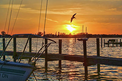 Photograph - Evening Fisherman by HH Photography of Florida