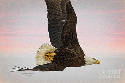 Painting - Evening Flight by Deborah Benoit