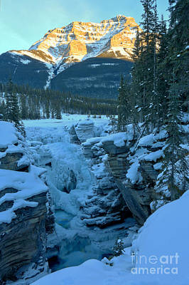 Photograph - Evening Glow Over Athabasca by Adam Jewell