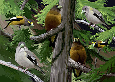 Digital Art - Evening Grosbeaks by Pam Little