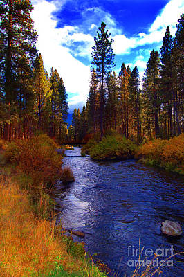 Evening Hatch On The Metolius River Photograph Art Print