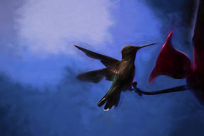 Painting - Evening Hummingbird by Bonnie Bruno