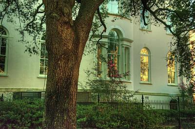 Photograph - Evening In Garden Behind The House by Douglas Barnett