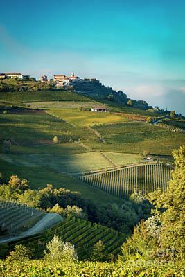 Grapevines Photograph - Evening In Piemonte by Brian Jannsen