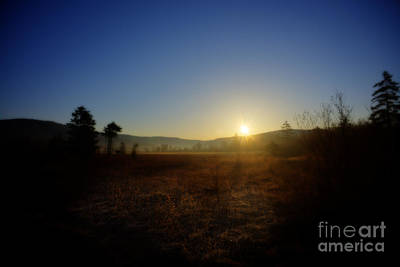 Photograph - Evening In The Cranberry Glade by Dan Friend