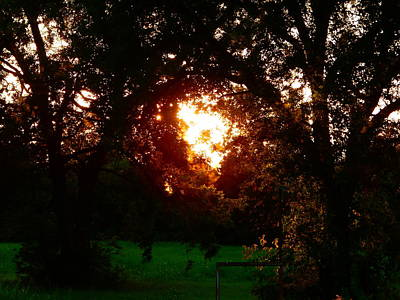 Photograph - Evening Light In The Pecan Bottom by Virginia Kay White