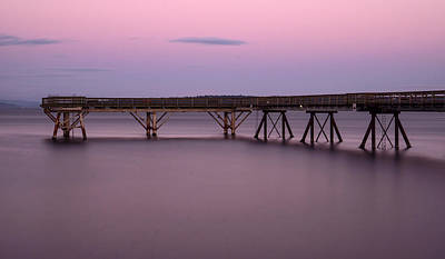 Photograph - Evening Light by Inge Riis McDonald