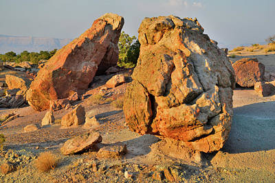 Photograph - Evening Light On Boulders In Bentonite Site by Ray Mathis