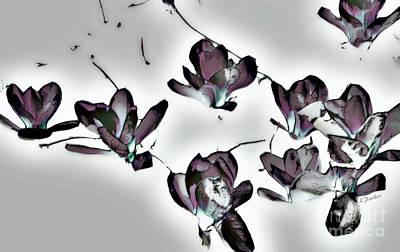 Evening Magnolia Art Print by Linda Parker