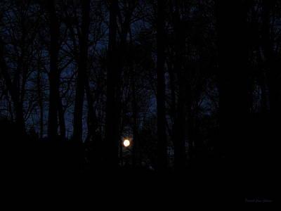 Evening Moon Art Print by Deborah  Crew-Johnson