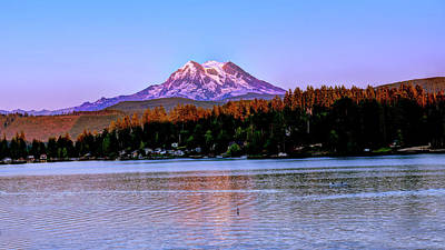 Photograph - Evening Mt Rainier by Bill Dodsworth