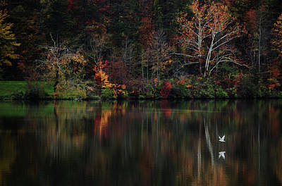 Evening On The Lake Art Print