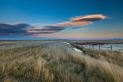 Photograph - Evening On The Plains by Fran Riley