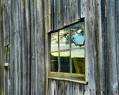 Photograph - Evening Out At The Barn by Julie Dant