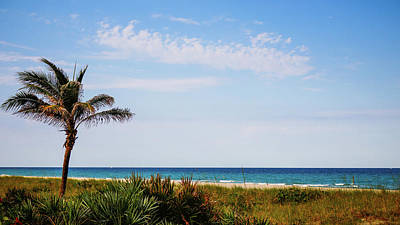 Photograph - Evening Palm Delray Beach Florida by Lawrence S Richardson Jr