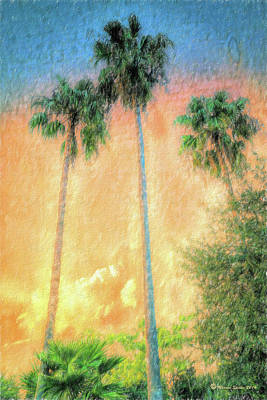 Colorful Digital Art Photograph - Evening Palms by Marvin Spates