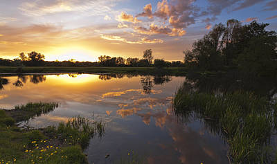 Photograph - Evening Reflection by Ian Merton