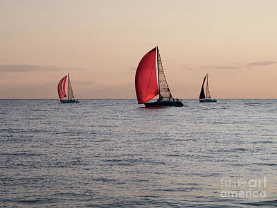 Photograph - Evening Sail by Ann Horn