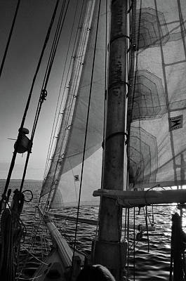 Photograph - Evening Sail Bw by David Cabana