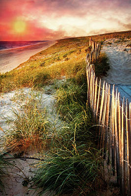 Photograph - Evening Sand Dunes by Debra and Dave Vanderlaan