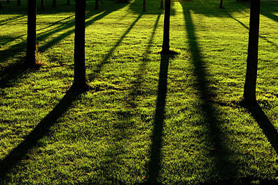 Photograph - Evening Shadows - 365-145 by Inge Riis McDonald