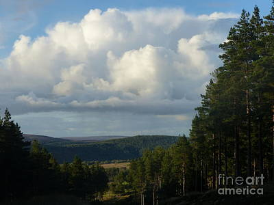 Photograph - Evening Shower Clouds by Phil Banks