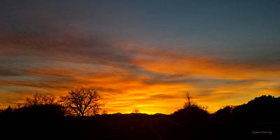 Evening Sky 4 Art Print by Susan Kinney