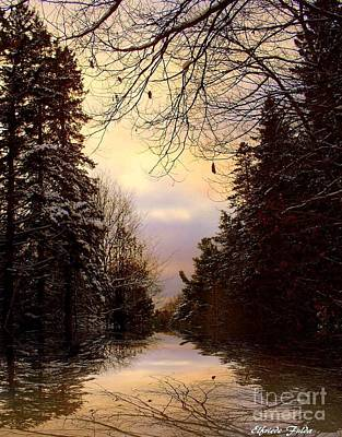 Photograph - Evening Sky by Elfriede Fulda