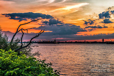 Photograph - Evening Sky On The Delaware River by Nick Zelinsky
