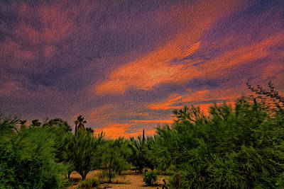 Photograph - Evening Sky Op54 by Mark Myhaver