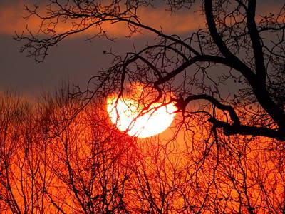 Photograph - Evening Splendor by Virginia Kay White