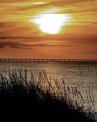 Photograph - Evening Sun by Pete Federico