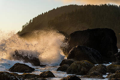 Photograph - Evening Surf by Robert Potts