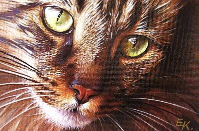 Evening Tabby Art Print
